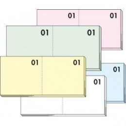Blocchi numerati /scontrini da 1 a 100 (ogni blocchetto contiene 100fg monocolore)